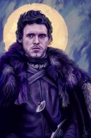 King of the North by c0nNy