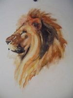 watercolor lion by paper-Panda