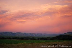 The Sky Turned Pink by AngelaLeonetti