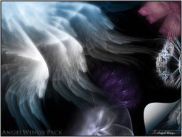 AngelWings Pack by FractalStock