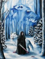 Winter is Coming by sawieb