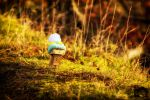 Trudge from Autumn to Winter by Profail
