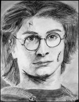 Harry Potter by Devil-Wolf-1999