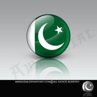 Pakistan Falg Icon by Ambrozial