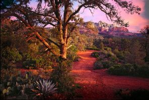 Sedona Sunset by Minorhero