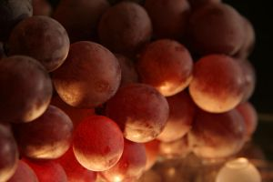 Grapes 02 by Lost-in-Art-1983