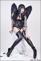 Dark Angel by zairia
