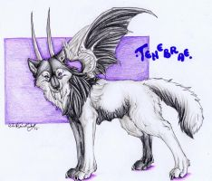 .::Tenebrae::. by WhiteSpiritWolf
