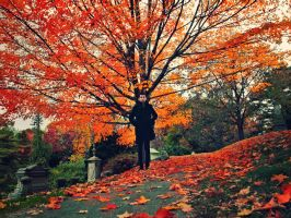New Autumn Id by MyLifeThroughTheLens