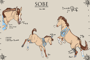 Sobe Reference by Twilight-Mustang