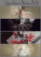 [PSD] Zing Cover Photos PSD ~ by SammyYun