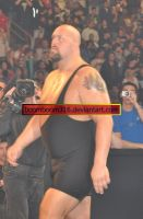 Raw after WM25 62 by boomboom316