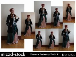 Eastern Emissary Pack 3 by mizzd-stock