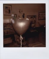 my first polaroid by lonely-heart5