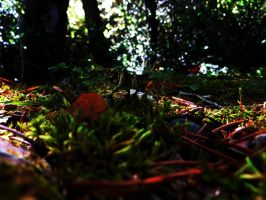 Breathing Undergrowth (With Creature) by Khanorr