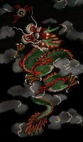 dragon by dielectric-m