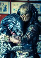 Alien Loves Predator by PedroTpredator