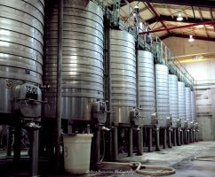 Wine Vats by SelenaMarie