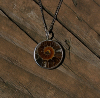 Ammonite Pendant by KubusRubus