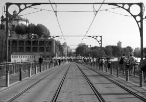 Ponte D. Luis by AnaMarques29