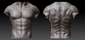 Male Anatomy - 02 by shoaibMalik