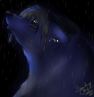 .:DarkShadow headshot:. by Lurker89