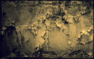 Texture Mrs. Tattered by E-DinaPhotoArt