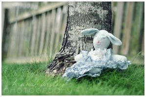 Mrs. Bunny by Fimrah