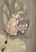 Cougar Cubs by krazyklaws