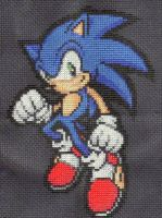 Sonic the Hedgehog by StitchPlease