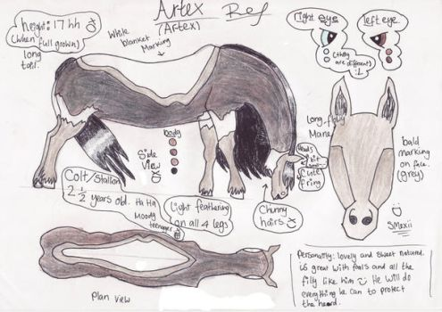 Artex Ref by Horsegeek-ox