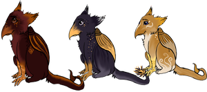 Cheshire Gryphs adopts by collie-rado