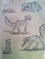 Jayfeather by CookieFennec