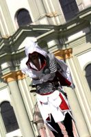 AC Brotherhood-Ezio Cosplay 12 by LadyBad