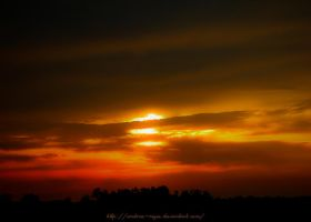 Port Acres Sunset by Andrea-Reyes