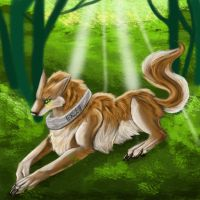 Forest wolf by Lucky978