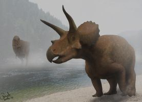 Triceratops. by Frank-Lode
