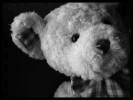 Teddybear by marska