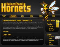 Hornets Basketball Site by datamouse