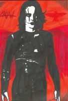 the crow in markers by monklikespunk