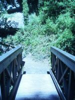 The Bridge to Nowhere by HyperPinkFish
