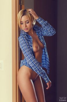 Plaid shirt by DmitryElizarov