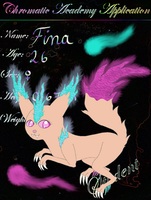 Fina CA_Application by LuciaSeriin