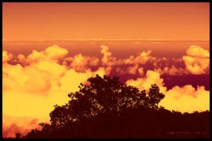 Level with the clouds by PenelopeT