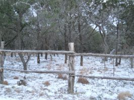 Fence by Chris01125