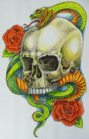 snake skull colour by hoviemon