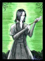 Severus Snape by CamilliaTepes