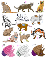Cat Adoptables (points or art) by Nefixion