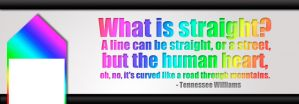 facebook cover - what is straight by Reddari
