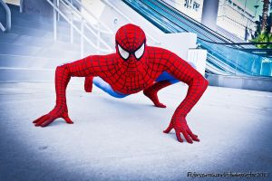 Spiderman by Rebecca-Manuel